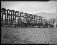 Opening gate at unknown horse race, Santa Anita track, Arcadia, circa 1935