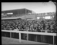 Crowds viewing race at Santa Anita, Arcadia, circa 1935