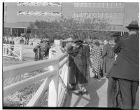 Spectators on Derby Day at Santa Anita, February 22, 1937.
